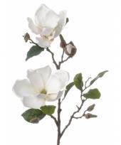 Witte magnolia decoratie tak 72 cm trend