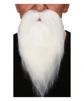 Witte puntige baard met snor trend
