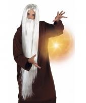 Witte tovenaar pruik met baard voor volwassenen trend