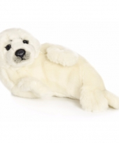 Witte zeehonden knuffels 24 cm trend