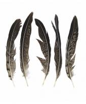 Woondeco fazantveren 13 cm 5 stuks trend