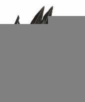 Woondeco fazantveren 18 cm 5 stuks trend 10131727