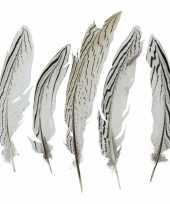 Woondeco fazantveren 18 cm 5 stuks trend