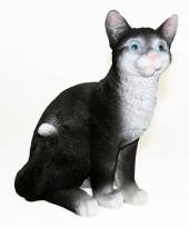 Zittend katten beeldje zwart 29 cm trend
